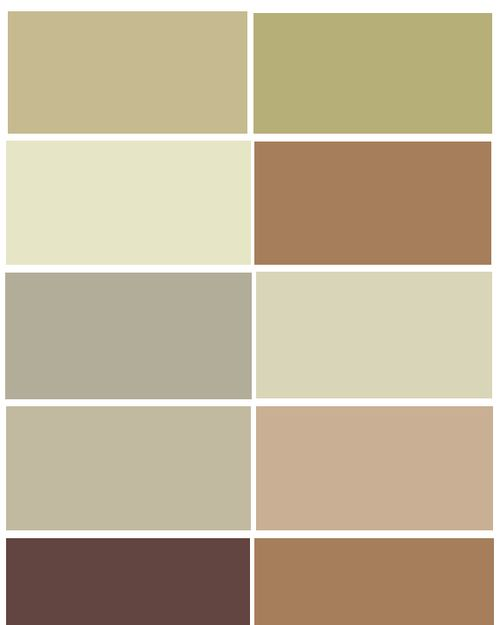 Natural Color Palette: CSI Bob Cool Brown Large Swatches 1